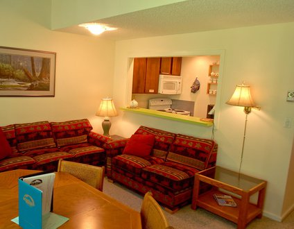 38SW - WiFi - Fireplace - Dishwasher - W/D - Sleeps 6