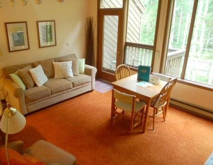 85SW - Fireplace - Washer/Dryer - Dishwasher - Sleeps 6