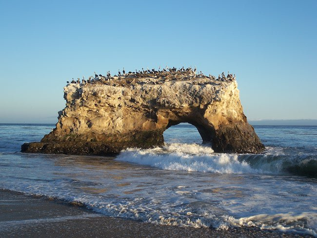 Santa Cruz natural bridges