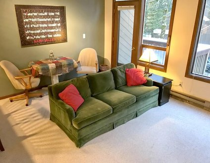 48SW - WiFi - Fireplace - Washer/Dryer - Sleeps 7