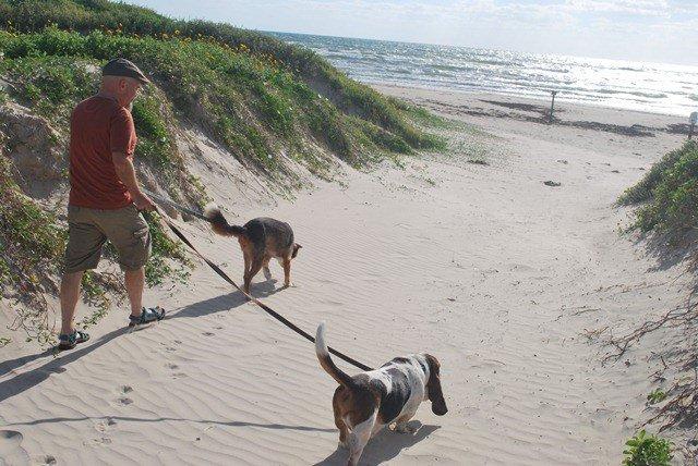 Cannon Beach dog friendly