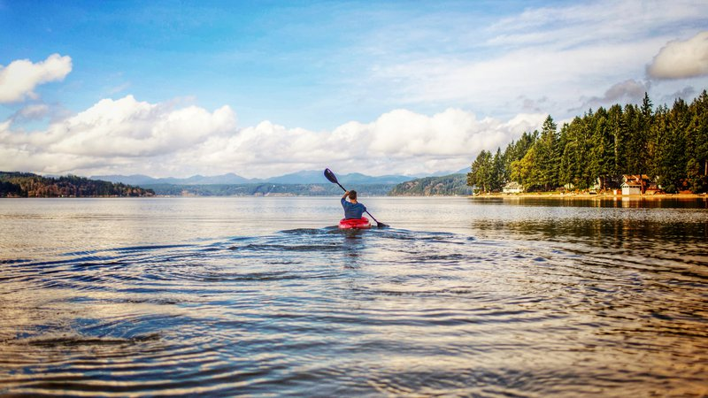 Intrepid Paddlers, Maine is your Siren Call