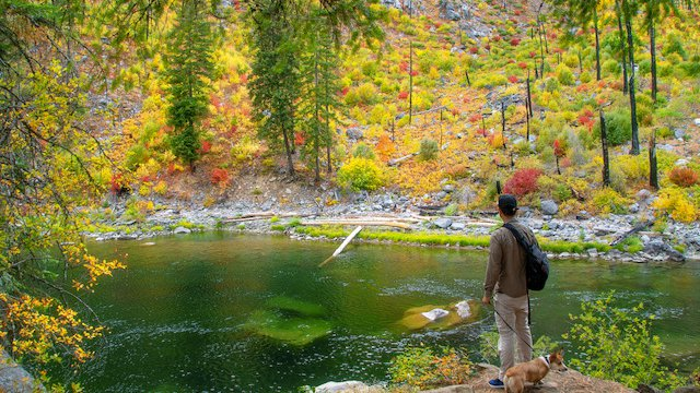 Autumn Colors int the Northwest